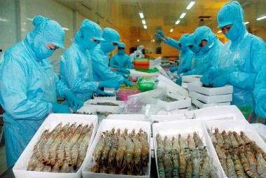 Xuất khẩu thủy sản Việt Nam ồ ạt sang thị trường Nga - Mỹ