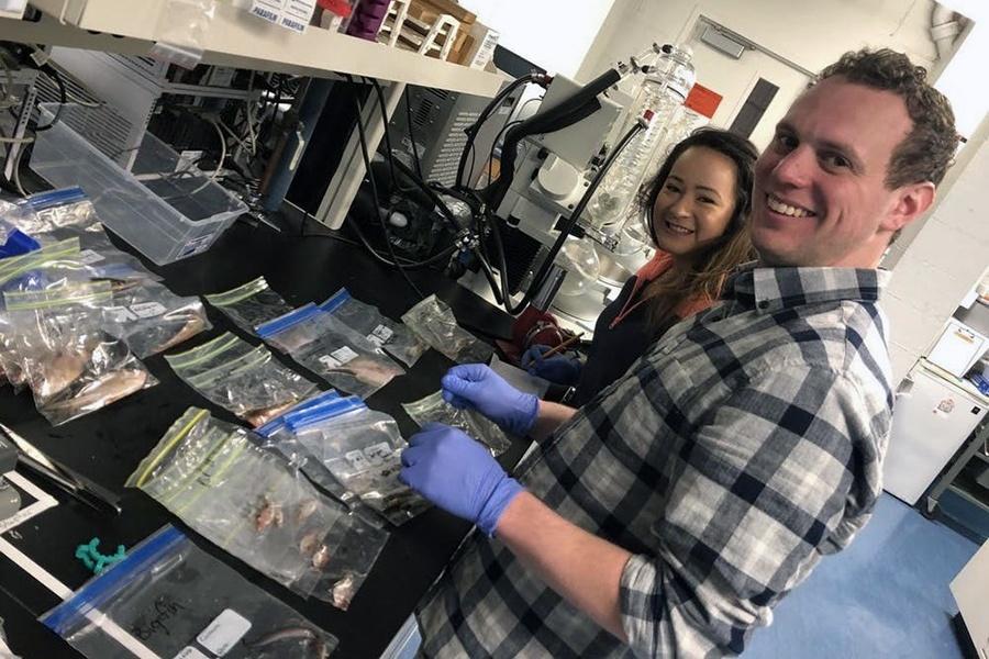 Chất nhầy trên da cá: Nguồn kháng sinh mới chưa được khai thác