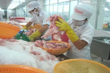 Xây dựng thương hiệu cá tra Việt Nam sau 20 năm xuất khẩu
