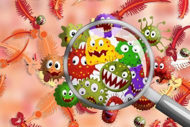 Artemia - Vật chủ lây nhiễm EHP trên tôm?