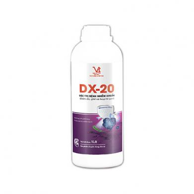 DX-20