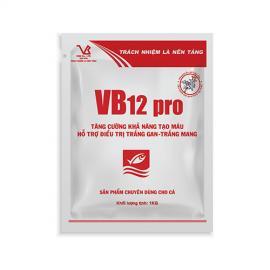 VB12 pro