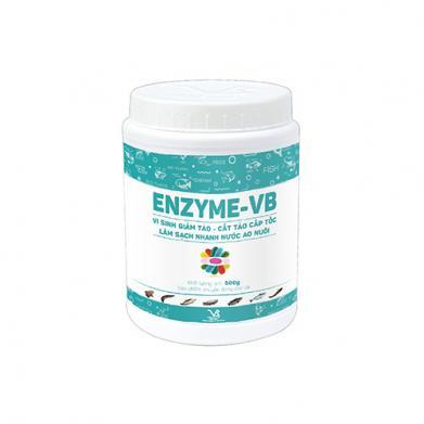 ENZYME-VB