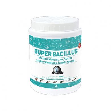 SUPER BACILLUS_BT