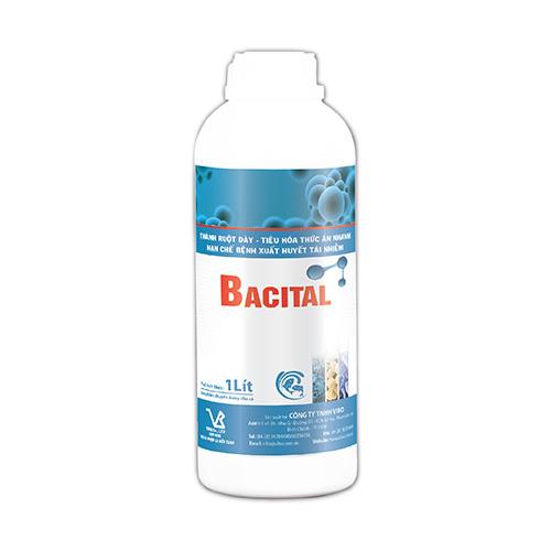 BACITAL