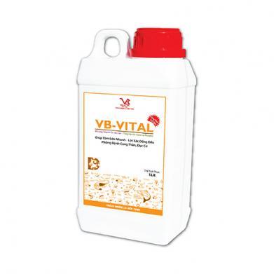 VB-VITAL