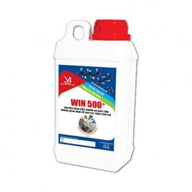 WIN 500+