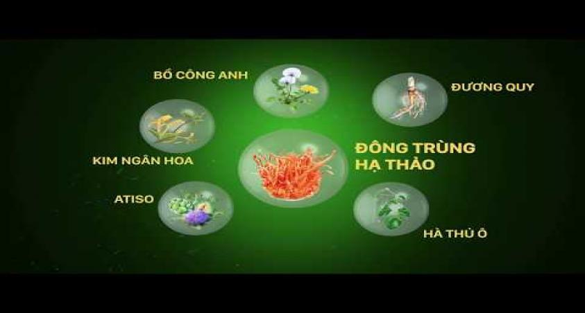 LIVERMIN pro - THẢO DƯỢC TÁI TẠO MÔ GAN
