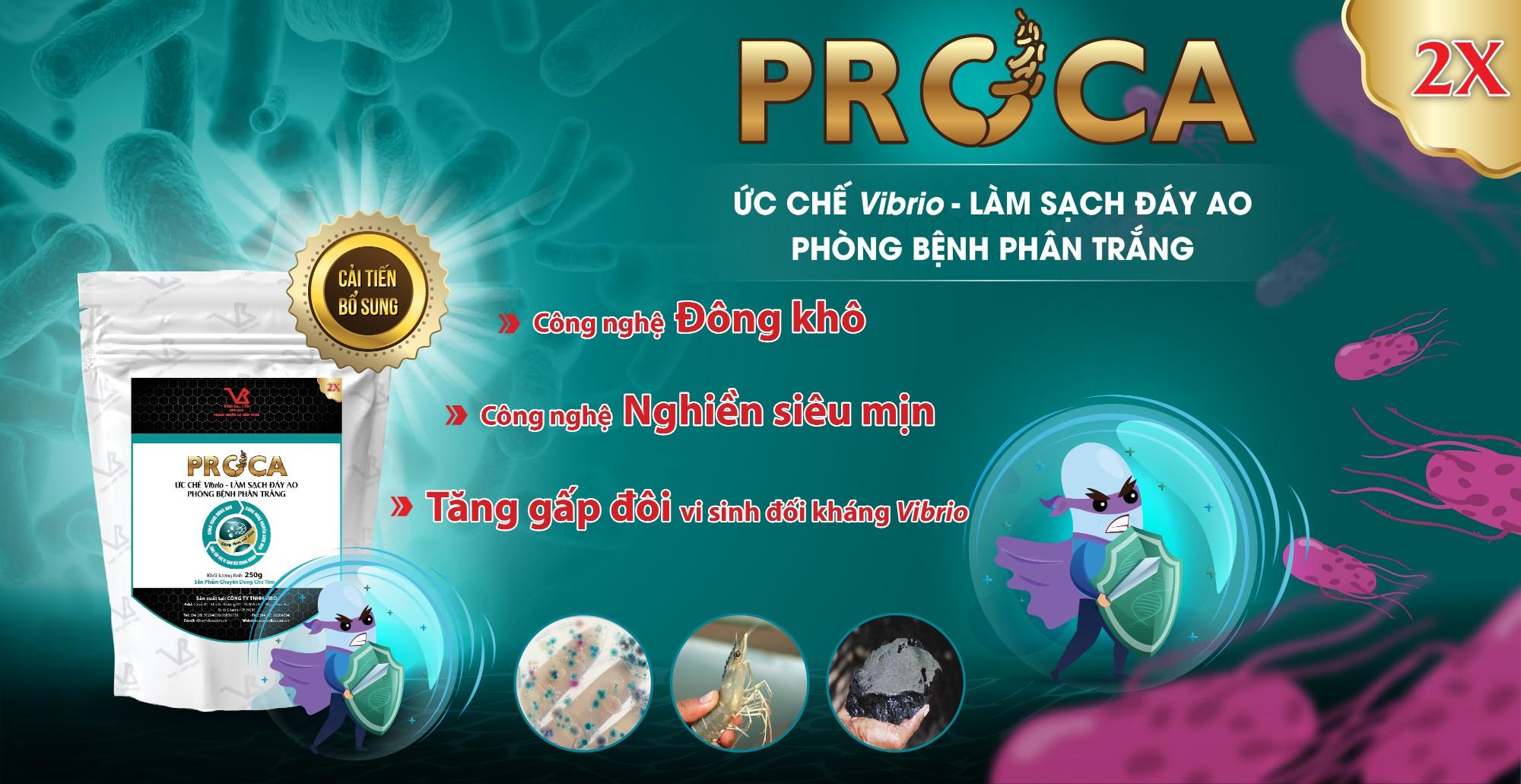 PROCA 2X