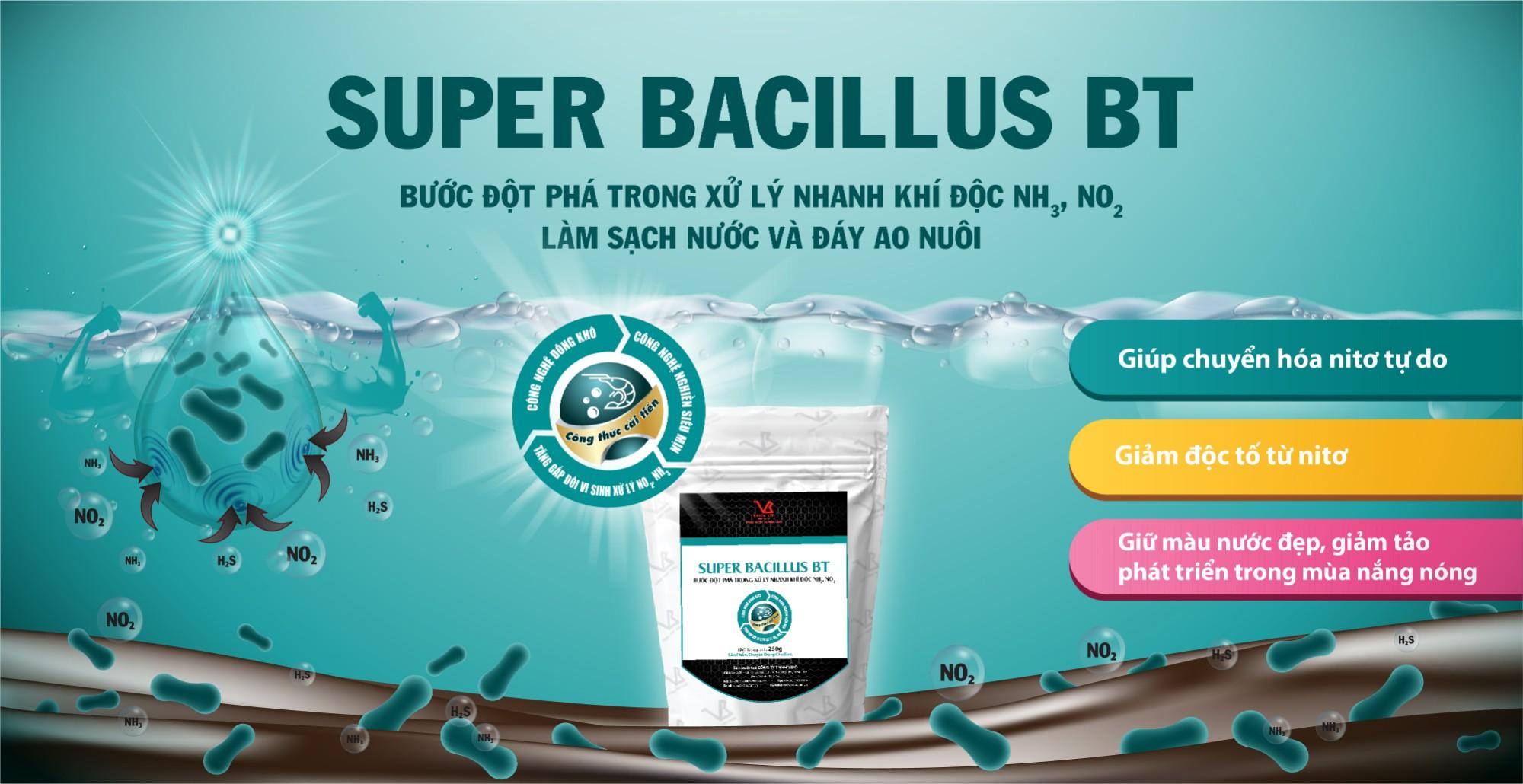 SUPER BACILLUS BT